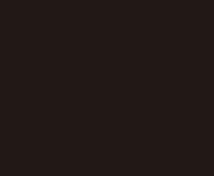 logo_celyan